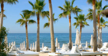 Relaxing beach with palm trees in Marbella
